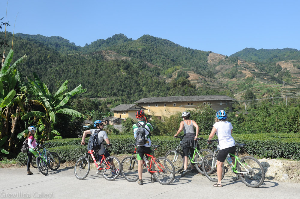 Vantage points for appreciating tulou fengshui multiplies on a bicycle.