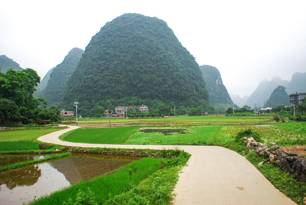 Perfect cycleways  through Yangshou's  limestone karsts.